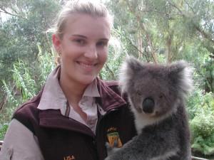 koala.hold