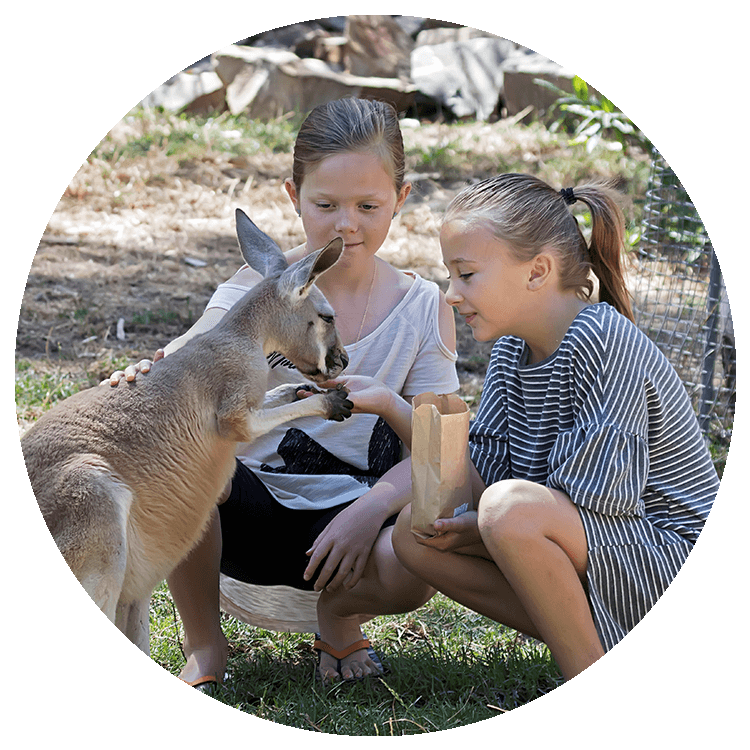 two young girls hand feed a kangaroo