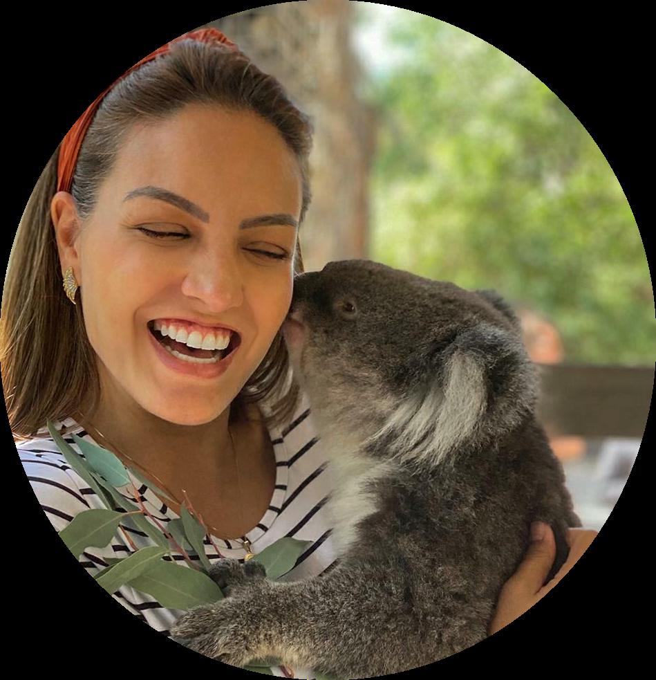 Koala_lg